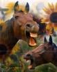 horse artwork pet portraits